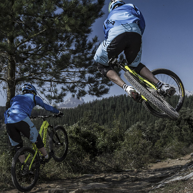 A mountain bike for every discipline